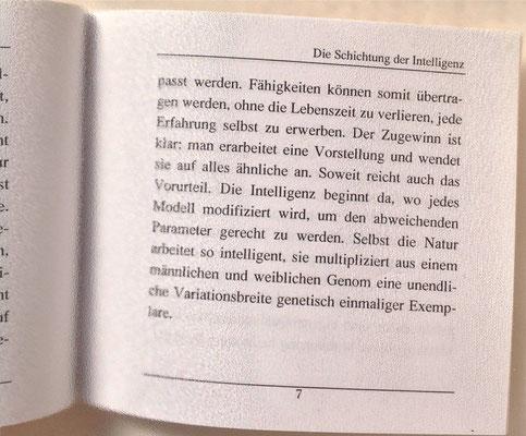 Karin Mettke-Schröder/Schichtung der Intelligenz/Thesen zum Gigabuch Michael/Nanobook Nr. 3/2004/Seite 7
