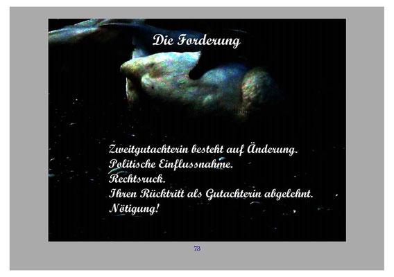 ™Gigabuch-Bibliothek/iAutobiographie Band 14/Bild 1067