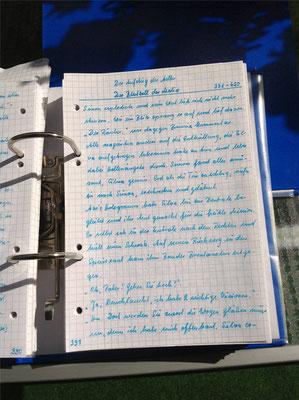 Petra Mettke/Gigabuch Winkelsstein 07/Original 2012/5. Kapitel: Der Blutzoll der Malice