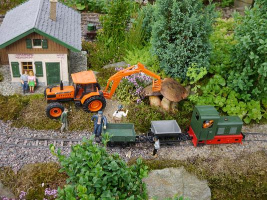 """Aufregung im """"Lande Liliput"""" riesige Hexenpilze sollen mit schwerer Technik geborgen werden. Tatsache ist, die Gartenbahn wird zum Dokumentatsionsobjekt für Sammlerglück.  Schön, wenn so was auch im Garten wachsen würde."""