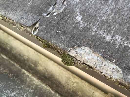 屋根張替工事