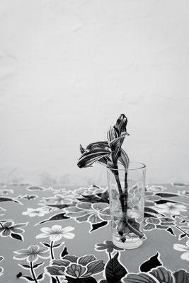 """PROMISE aus der Serie """"Far away but close"""", 2019, Fine Art Pigment Print, 75 x 50 cm, Ed. 5"""