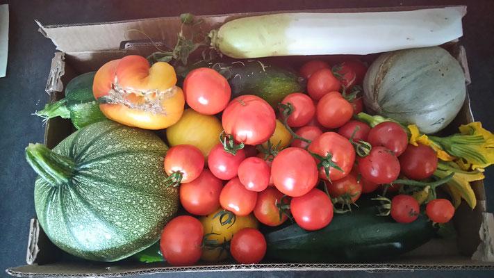légumes de la Maison d'Amélina