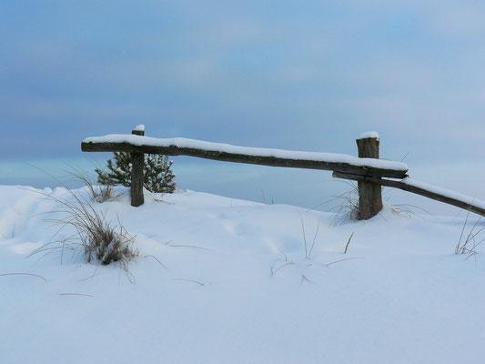 Verschneite Düne auf dem Darß