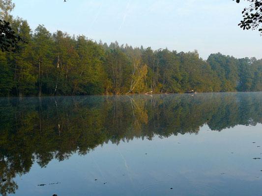 Frühmorgens im Oktober an einem stillen See nahe Mecklenburg...