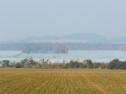 Eislandschaft in der Mecklenburgischen Schweiz (Kummerower See)