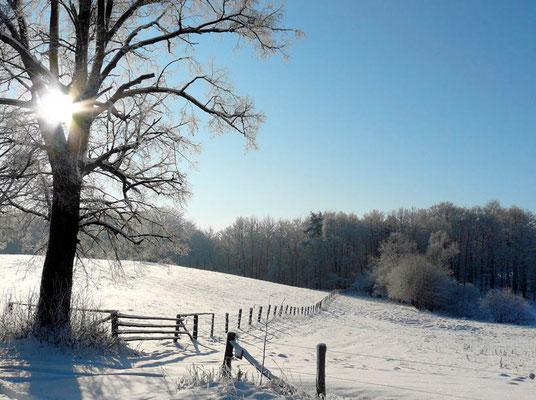 Ein herrlicher sonniger Wintertag lockt hinaus!