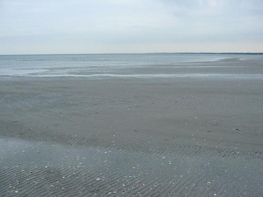 Strandweite durch Rückzug des Meeres – die Gedanken fliegen zum Meer...
