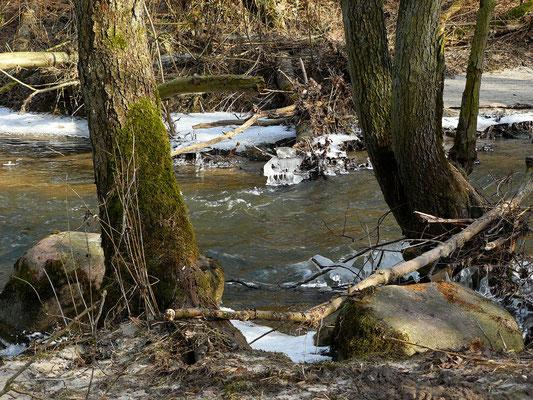 Winter am Fließ