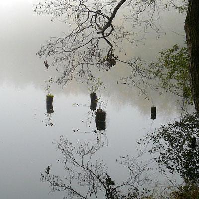 Ulkige Gebilde auf dem nebligen See