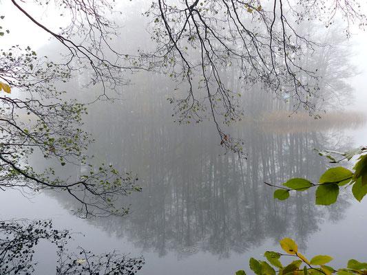 Nebelumwobene Insel im See