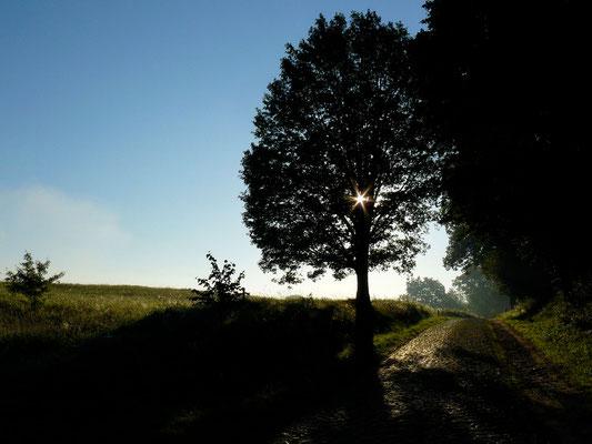 Die Uckermark mutet oft verträumt an – hier erinnert sie mich an Masuren....