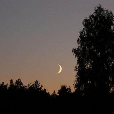 Still ist´s, als die Sichel am Abendhimmel erscheint.