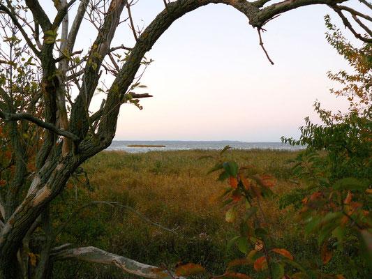 Blick auf´s Stettiner Haff (Insel Usedom am Horizont)