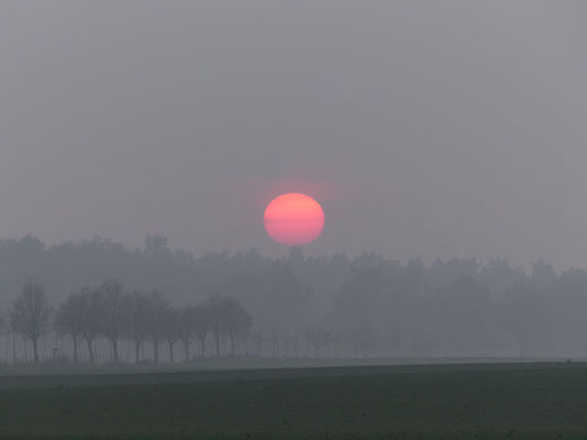 Sonnenuntergang bei Templin