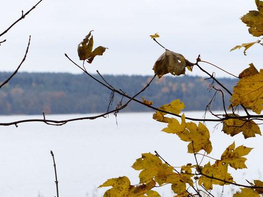 Herbstlicher Blick über den See