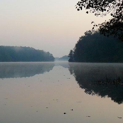 Nebelschwaden streichen noch sanft über den See, bis die Sonne sie auflöst.