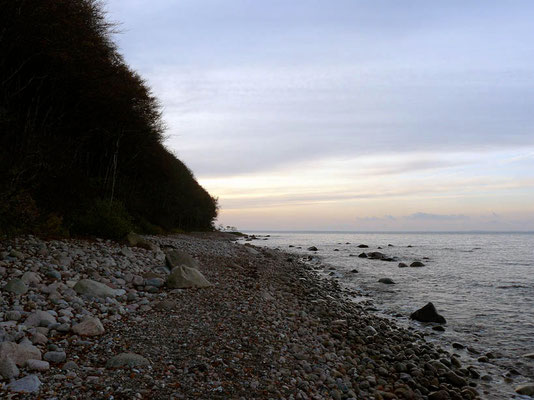 Steinstrände gibt es viele auf der Insel Rügen