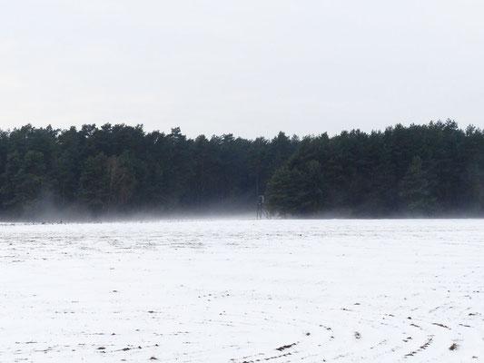 Schneeschmelze mit Winden