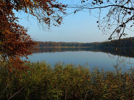 Ein stiller See in buntgefärbter Landschaft...