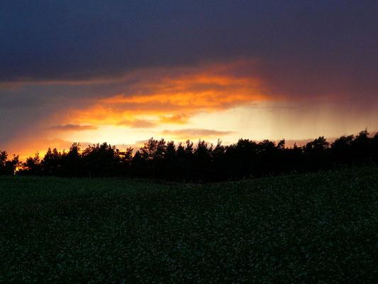 Regenstimmung bei Sonnenuntergang