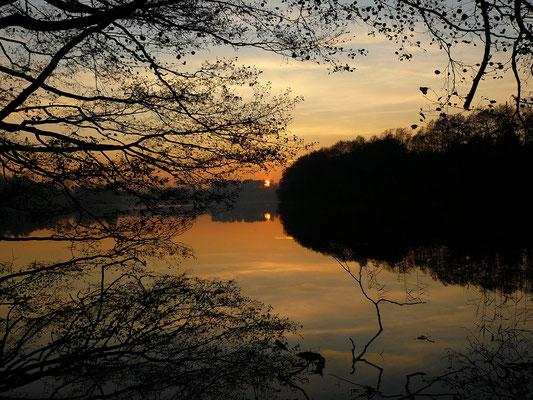Sonnenuntergang am immer wieder faszinierenden Schmalen Luzin (Feldberger Seenlandschaft)