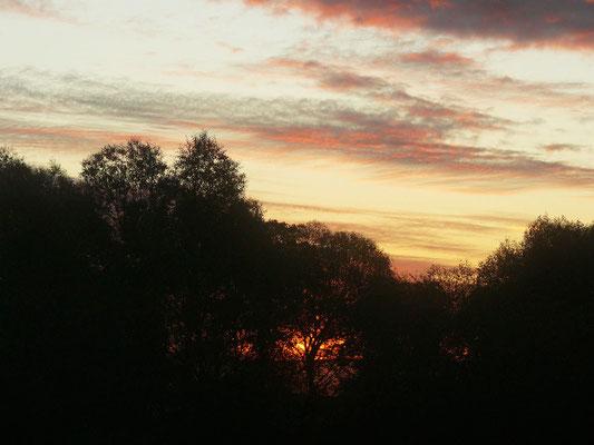 Morgenröte eines kalten Wintertages