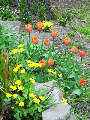 Farbenrausch April '14