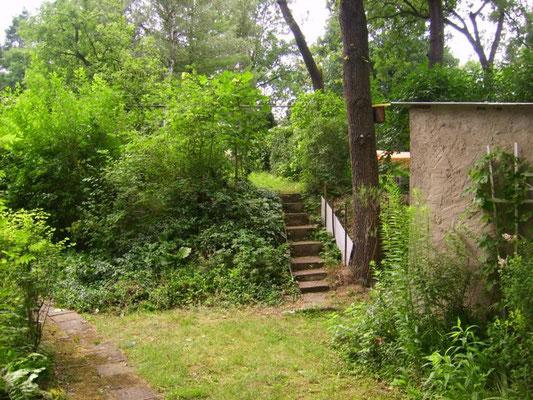 Juli '12: Der Ausgangszustand - Naturhang mit viel Gestrüpp