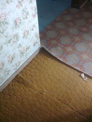 Fußboden vorher