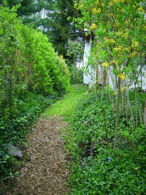 Der Weg hinterm Haus - im oberen Abschnitt Gras, im unteren mit Holzhäcksel belegt