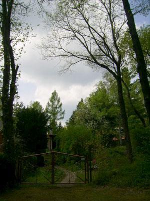 Der Eingang zum Waldgarten