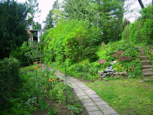 Hauptweg - vom Eingang hoch zum Gartenhaus