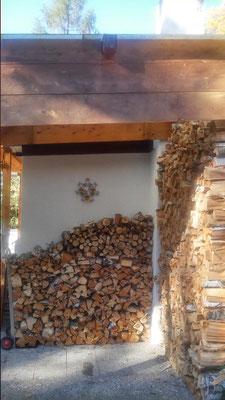 Brennholzlager - die alte Birke wurde gefällt