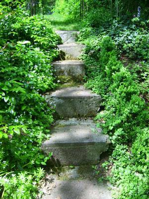 Kleines Treppchen zwischen Teich und Azaleenecke hoch zur Wiese