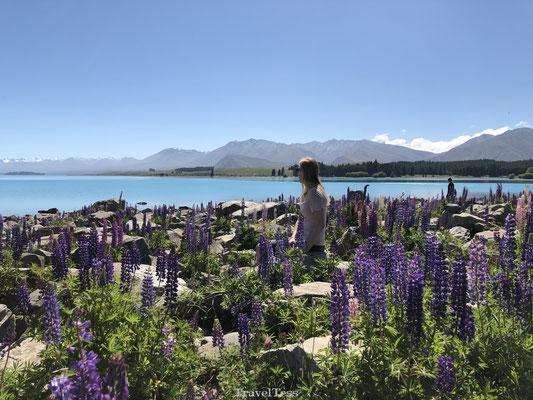 Bloemenzee Lake Tekapo