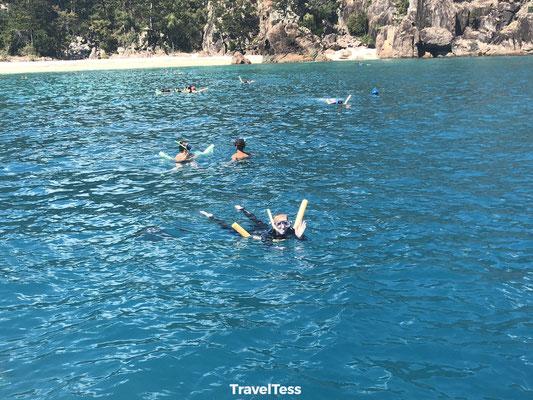 Snorkelen Whitsunday Islands