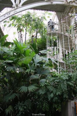 Kew Gardens Londen tuin