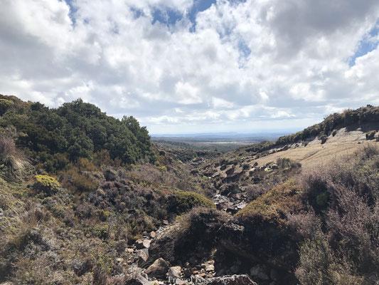Ruwe landschap van het Tongariro National Park