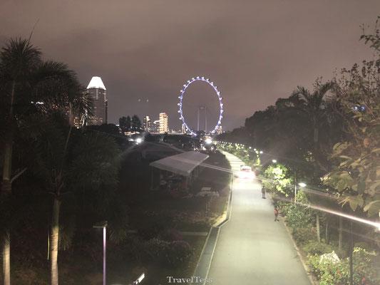 Reuzerad Singapore