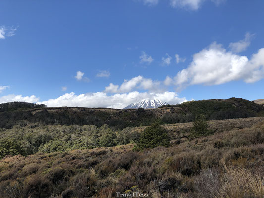 Mount Ngauruhoe in Tongariro National Park