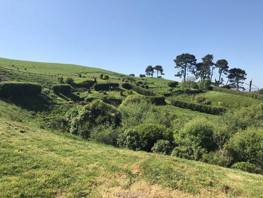 Filmlocatie Hobbit dorp