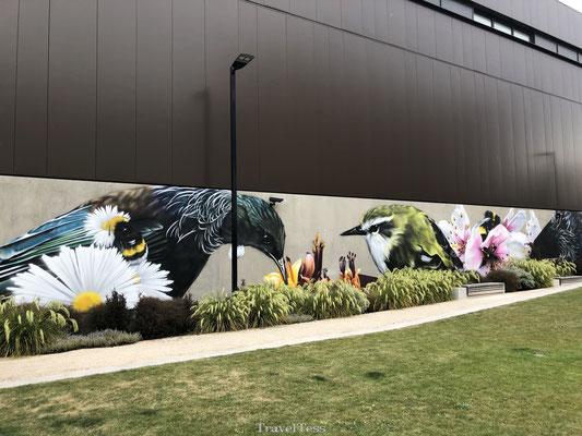 Muurschildering in Christchurch
