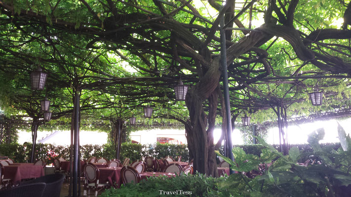 Terras Ristorante Papa Hotel Restaurant