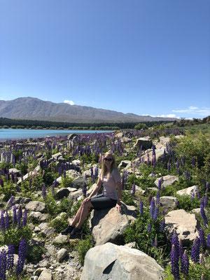 Fotosessie tussen de bloemen bij Lake Tekapo