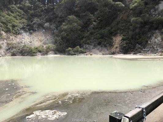 Krater in Wai-O-Tapu