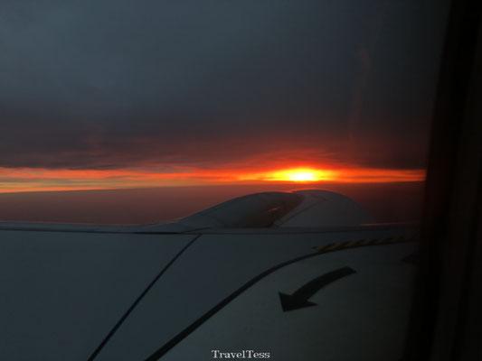 Vliegen in de vroege ochtend