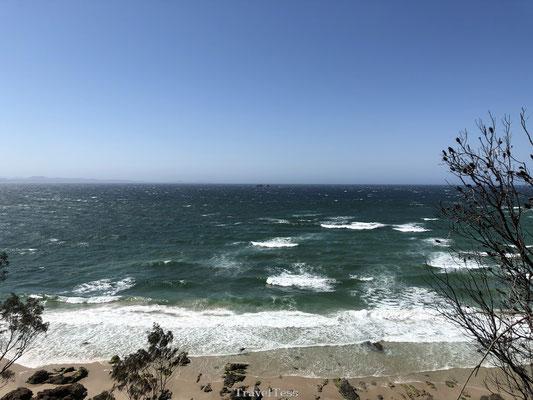Zee in Byron Bay