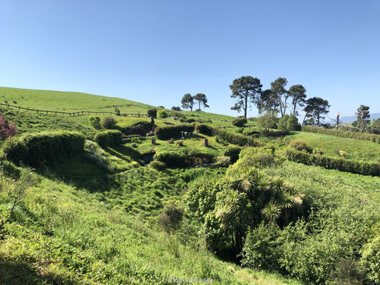 Hobbiton Movie Sets