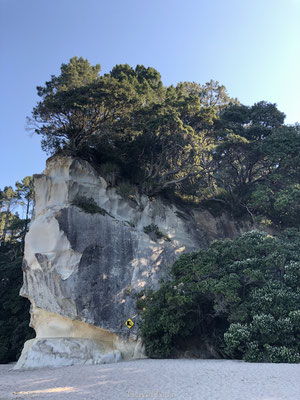 Rotswand Cathedral Cove